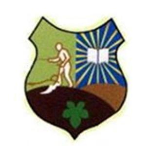 לוגו מועצה מקומית פסוטה